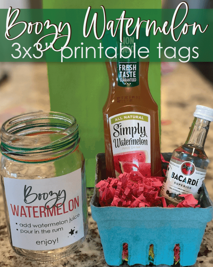 Boozy Watermelon Punch Party Favor And Prize Idea