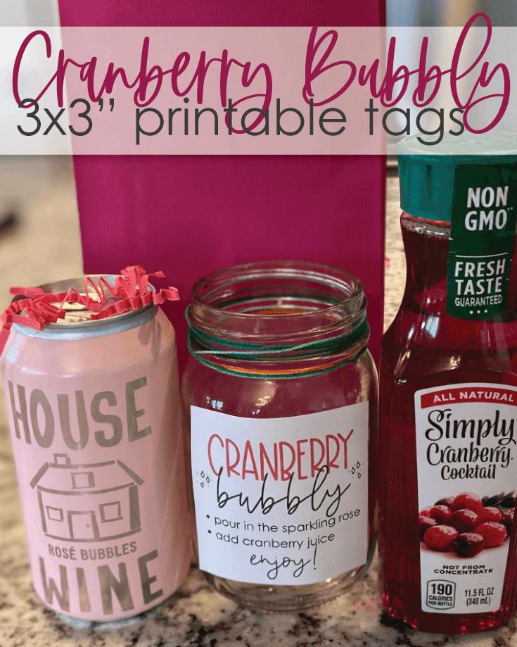 cranberry bubbly party favor idea
