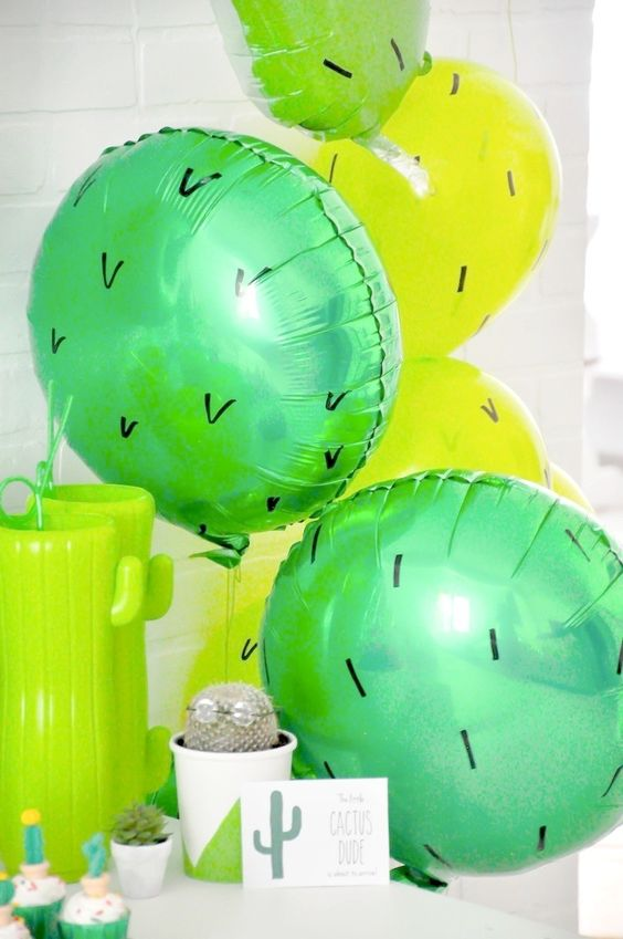 cute succulent  u0026 cactus party ideas for a baby shower or