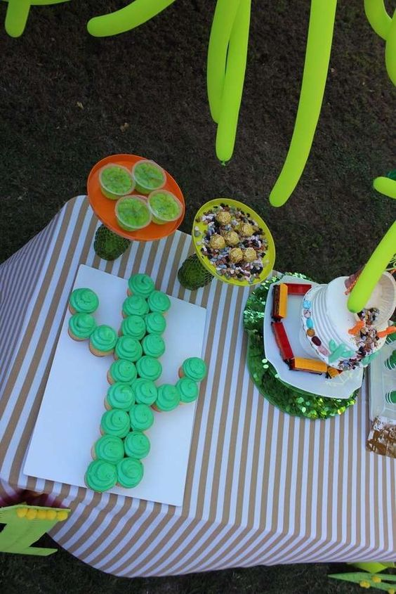cactus and succulent party ideas