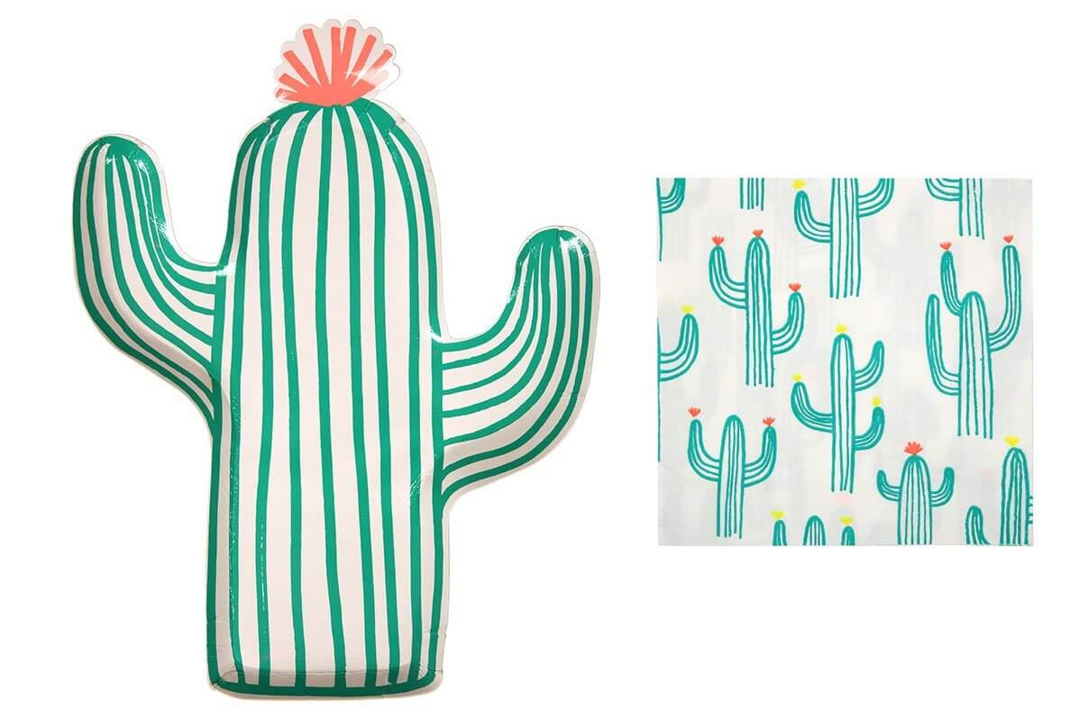 cactus and succulent party ideas and supplies