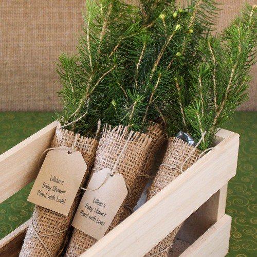 Woodland Baby Shower Mini Tree Favor Ideas