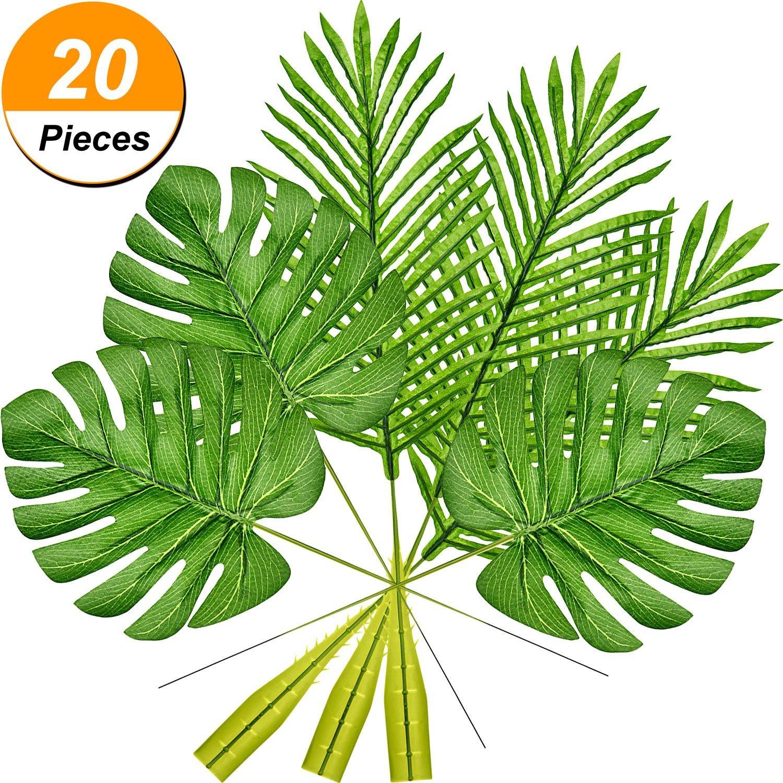 jungle foliage leaves