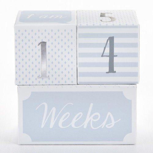 Baby milestone blocks baby gift