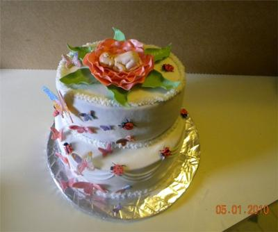 butterfly baby cake picture