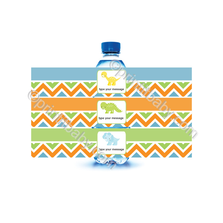 picture of printable dinosaur water bottle labels