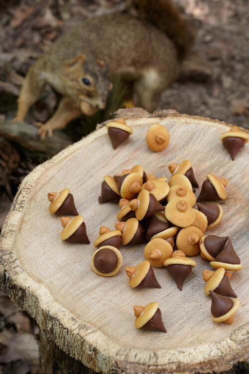 Woodland Creature Baby Shower Food Ideas